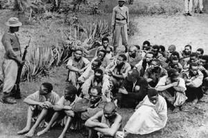 Black slaves in cangooo